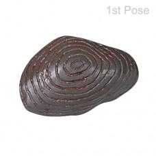 Rare Chrondit Iron Meteorite-O-MET005