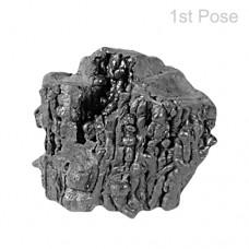 Rare Saturn Meteorite-O-MET010