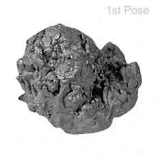 Rare Saturn Meteorite-O-MET011