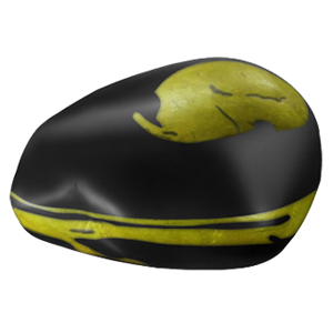 Yellow Shaligram